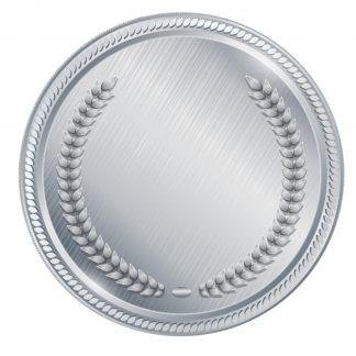 wieczór panieński warszawa silver